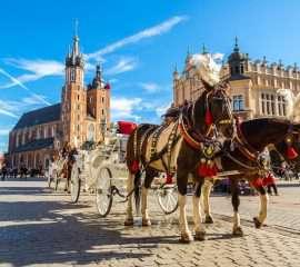 Onze programma's Warschau en Krakau