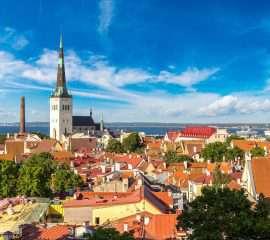 Onze programma's De Baltische staten