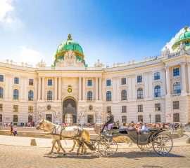 Onze programma's Stedentrip Wenen